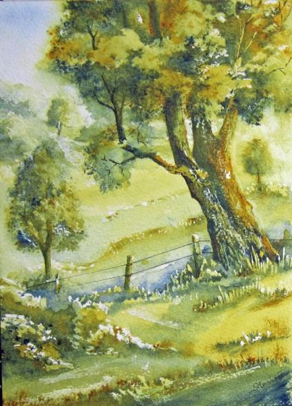 Raakmoor