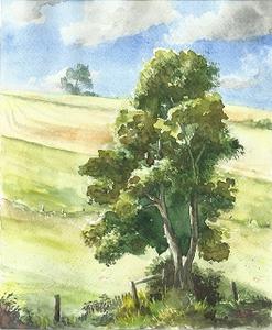 Siebenbrunnental-Am Zigeuner
